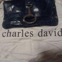 Blue Charles David Purse